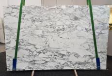 Fornitura lastre grezze lucide 2 cm in marmo naturale ARABESCATO CERVAIOLE GL 1023. Dettaglio immagine fotografie
