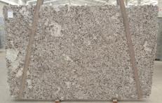 Fornitura lastre grezze lucide 3 cm in granito naturale BIANCO ANTICO BQ02188. Dettaglio immagine fotografie