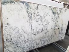 Fornitura lastre grezze lucide 2 cm in marmo naturale BRECCIA CAPRAIA CLASSICA 1780M. Dettaglio immagine fotografie