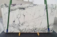 Fornitura lastre grezze lucide 2 cm in marmo naturale BRECCIA CAPRAIA 1251. Dettaglio immagine fotografie