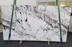 Fornitura lastre grezze lucide 3 cm in marmo naturale BRECCIA CAPRAIA 1282. Dettaglio immagine fotografie