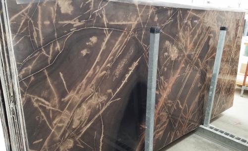 Fornitura lastre grezze lucide 2 cm in calcare naturale BRONZO VENATO 1529M. Dettaglio immagine fotografie