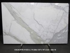 Fornitura lastre grezze lucide 2 cm in marmo naturale CALACATTA 1423M. Dettaglio immagine fotografie