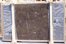 Fornitura lastre grezze lucide 2 cm in marmo naturale MARRON FOSSIL E-14694. Dettaglio immagine fotografie