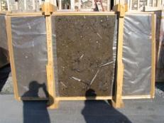 Fornitura lastre grezze lucide 2 cm in marmo naturale MARRON FOSSIL edi222mf. Dettaglio immagine fotografie