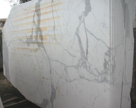 Fornitura lastre grezze lucide 2 cm in marmo naturale STATUARIO E-O411. Dettaglio immagine fotografie
