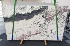BRECCIA CAPRAIA Fornitura (Italia) di lastre grezze lucide in marmo naturale 1283 , Slab #33