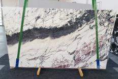BRECCIA CAPRAIA Fornitura (Italia) di lastre grezze lucide in marmo naturale 1283 , Slab #70