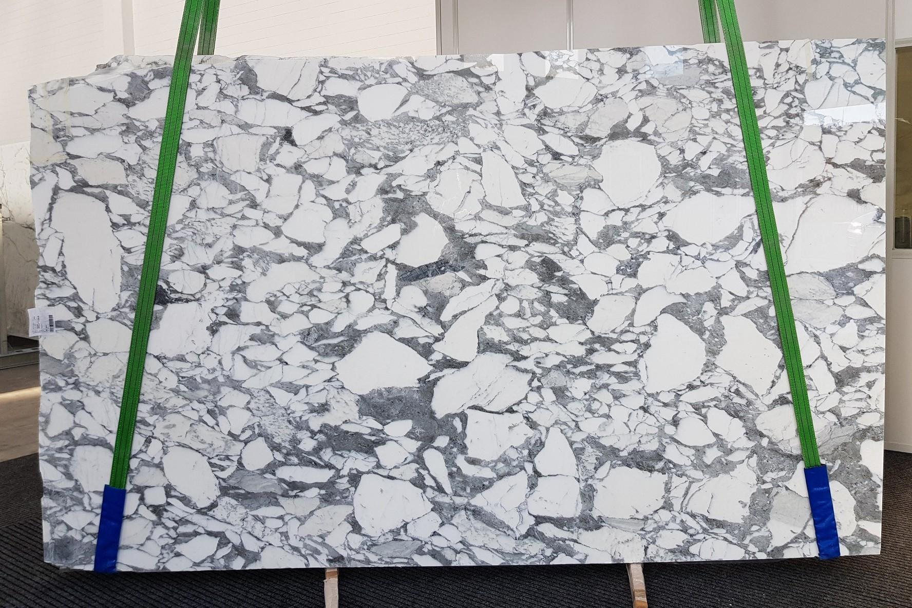 ARABESCATO CORCHIA Fornitura Veneto (Italia) di lastre grezze lucide in marmo naturale 1031 , Slab #09