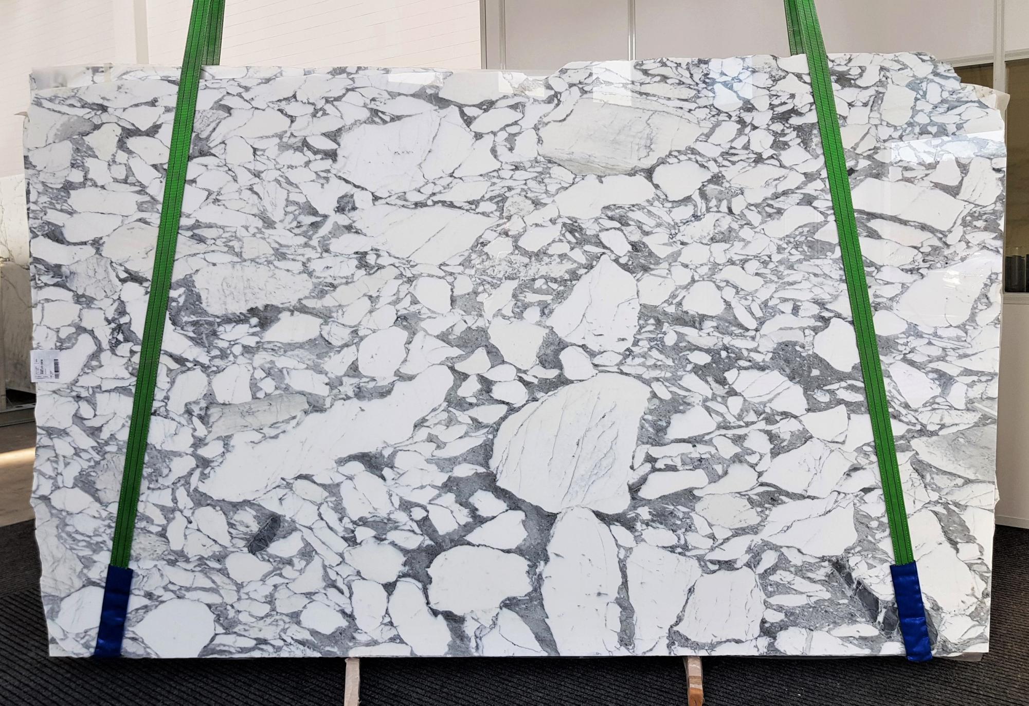 ARABESCATO CORCHIA Fornitura Veneto (Italia) di lastre grezze lucide in marmo naturale 1031 , Slab #01