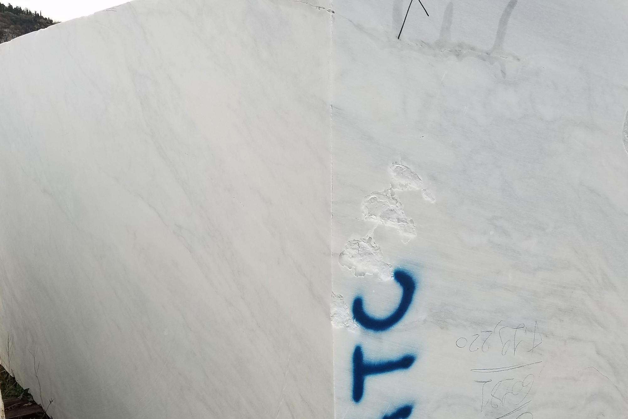 CALACATTA ARNI Fornitura Veneto (Italia) di blocchi segati in marmo naturale Z0175 , Face