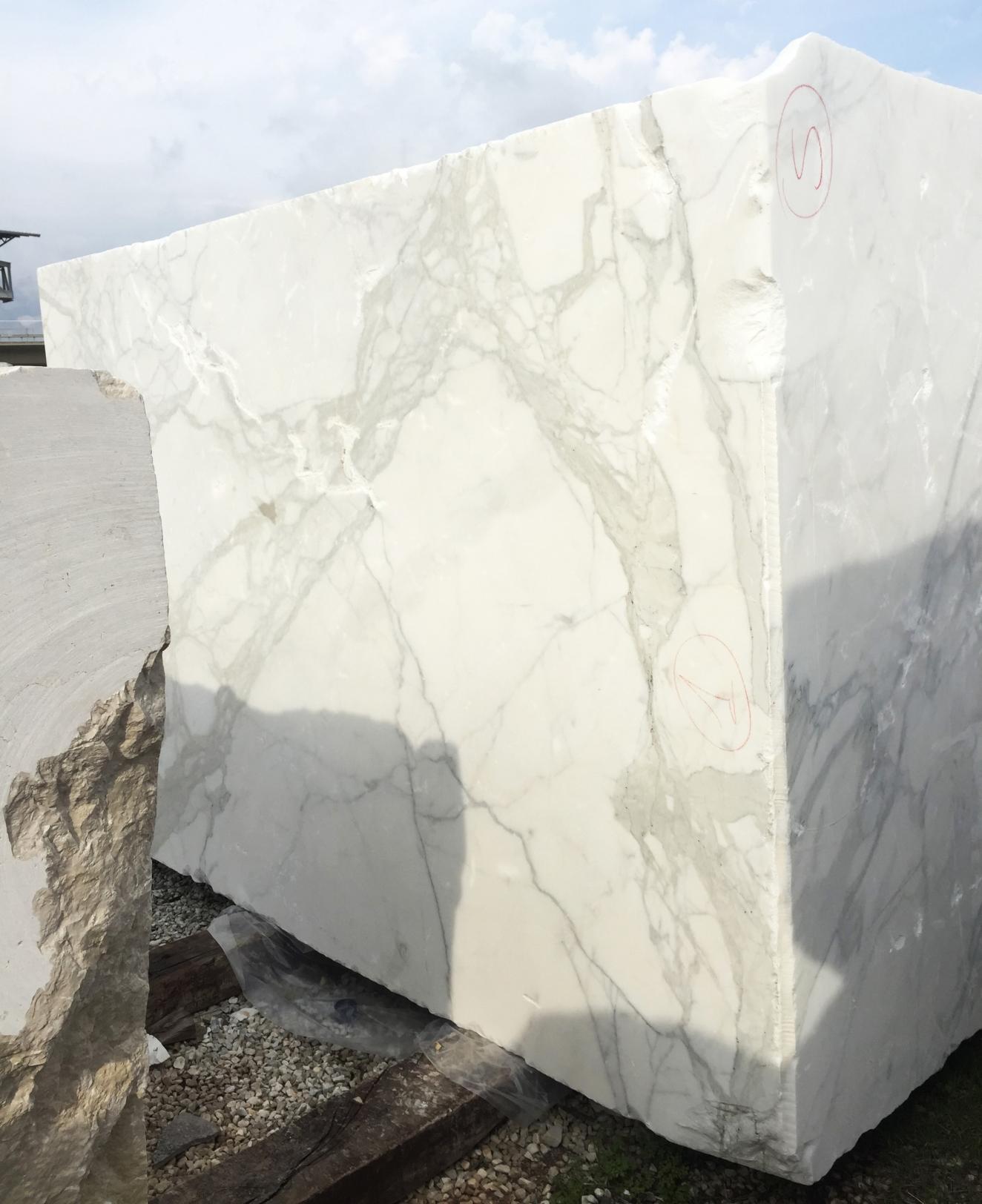 CALACATTA ORO EXTRA Fornitura Veneto (Italia) di blocchi grezzi in marmo naturale 2628 , Face A