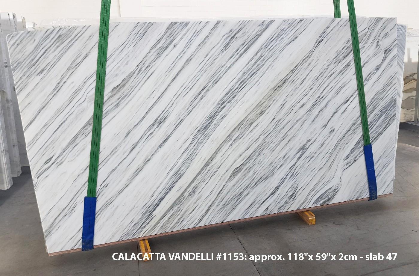 Calacatta Vandelli Fornitura Veneto (Italia) di lastre grezze lucide in marmo naturale 1153 , Slab #47