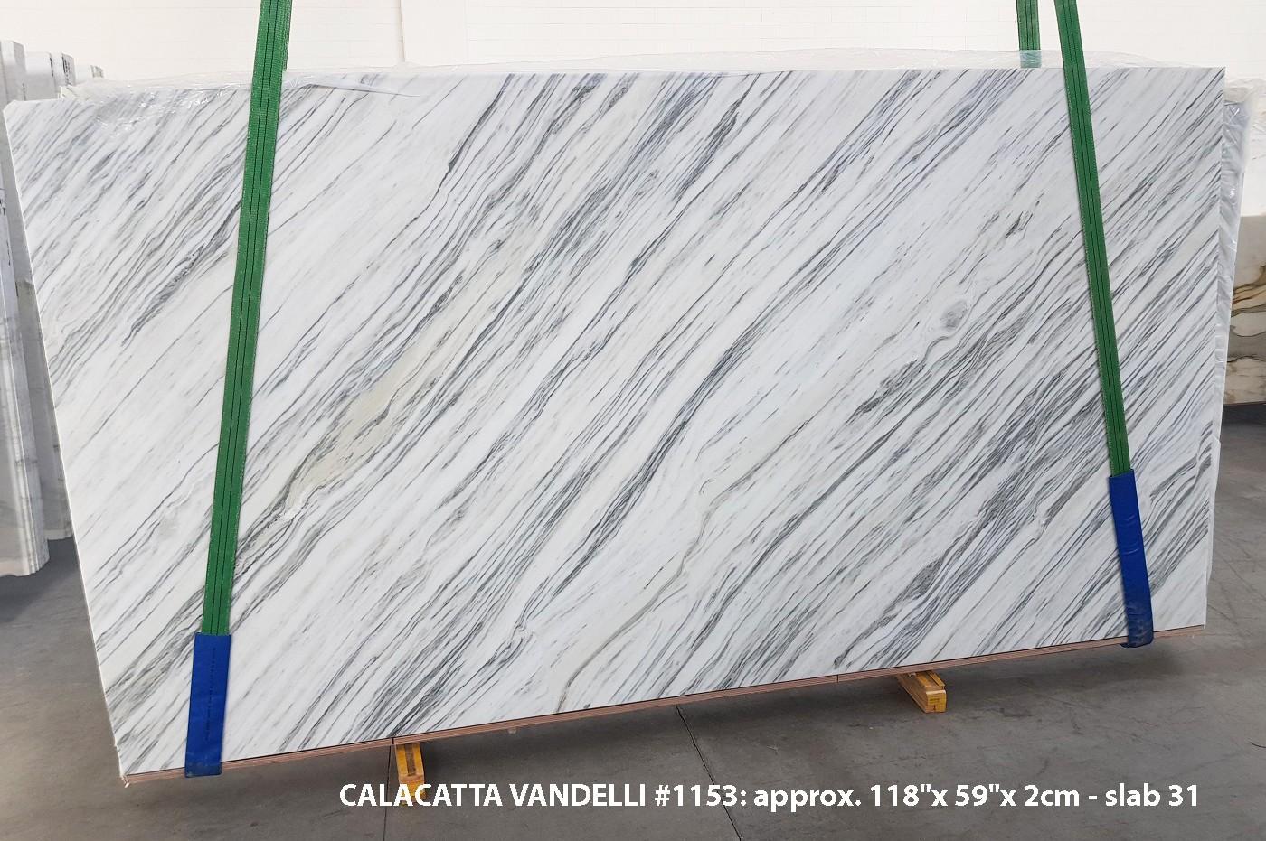 Calacatta Vandelli Fornitura Veneto (Italia) di lastre grezze lucide in marmo naturale 1153 , Slab #31
