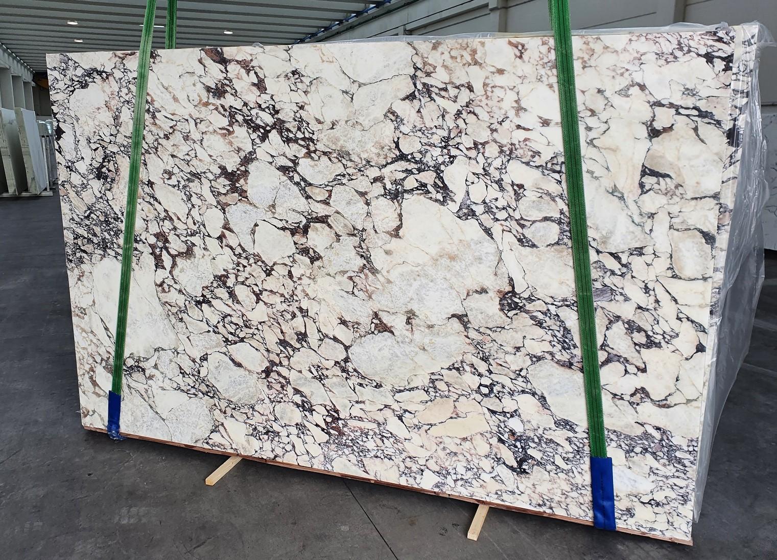 CALACATTA VIOLA Fornitura Veneto (Italia) di lastre grezze lucide in marmo naturale 1291 , Slab #08-3