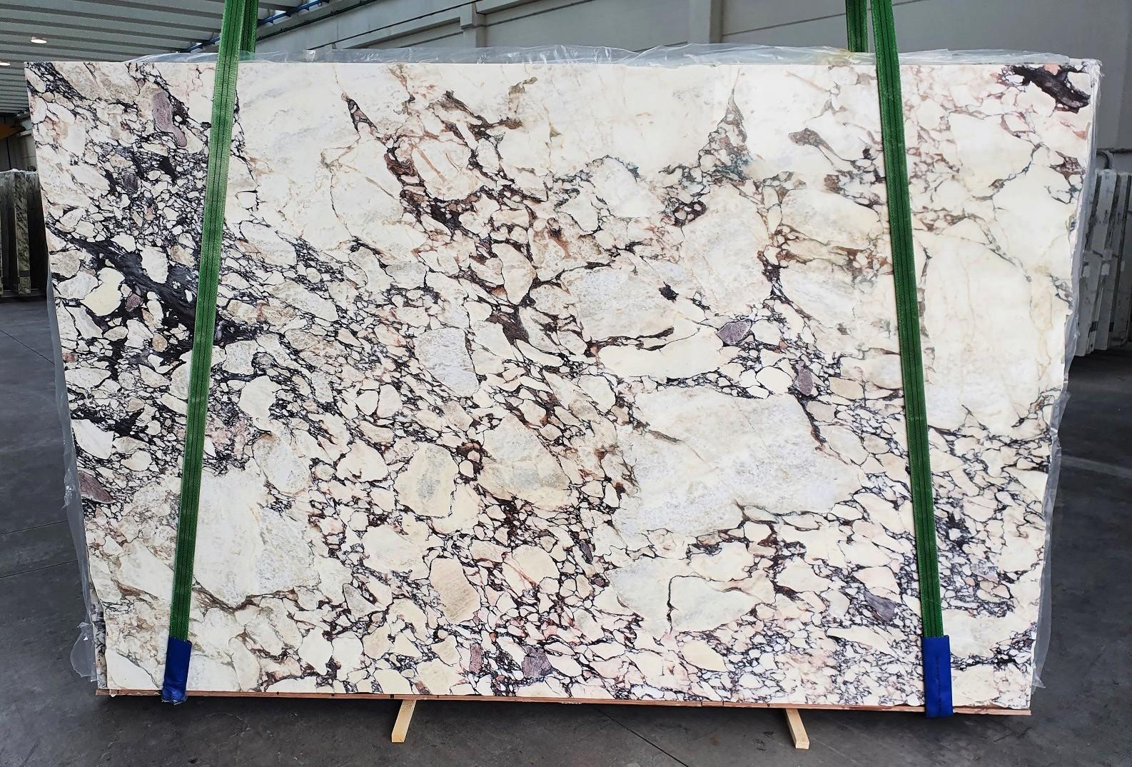CALACATTA VIOLA Fornitura Veneto (Italia) di lastre grezze lucide in marmo naturale 1291 , Slab #01-3