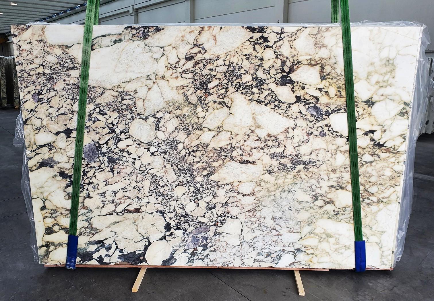 CALACATTA VIOLA Fornitura Veneto (Italia) di lastre grezze lucide in marmo naturale 1291 , Slab #51