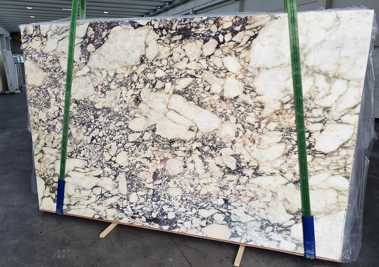 CALACATTA VIOLA Fornitura Veneto (Italia) di lastre grezze lucide in marmo naturale 1291 , Slab #42
