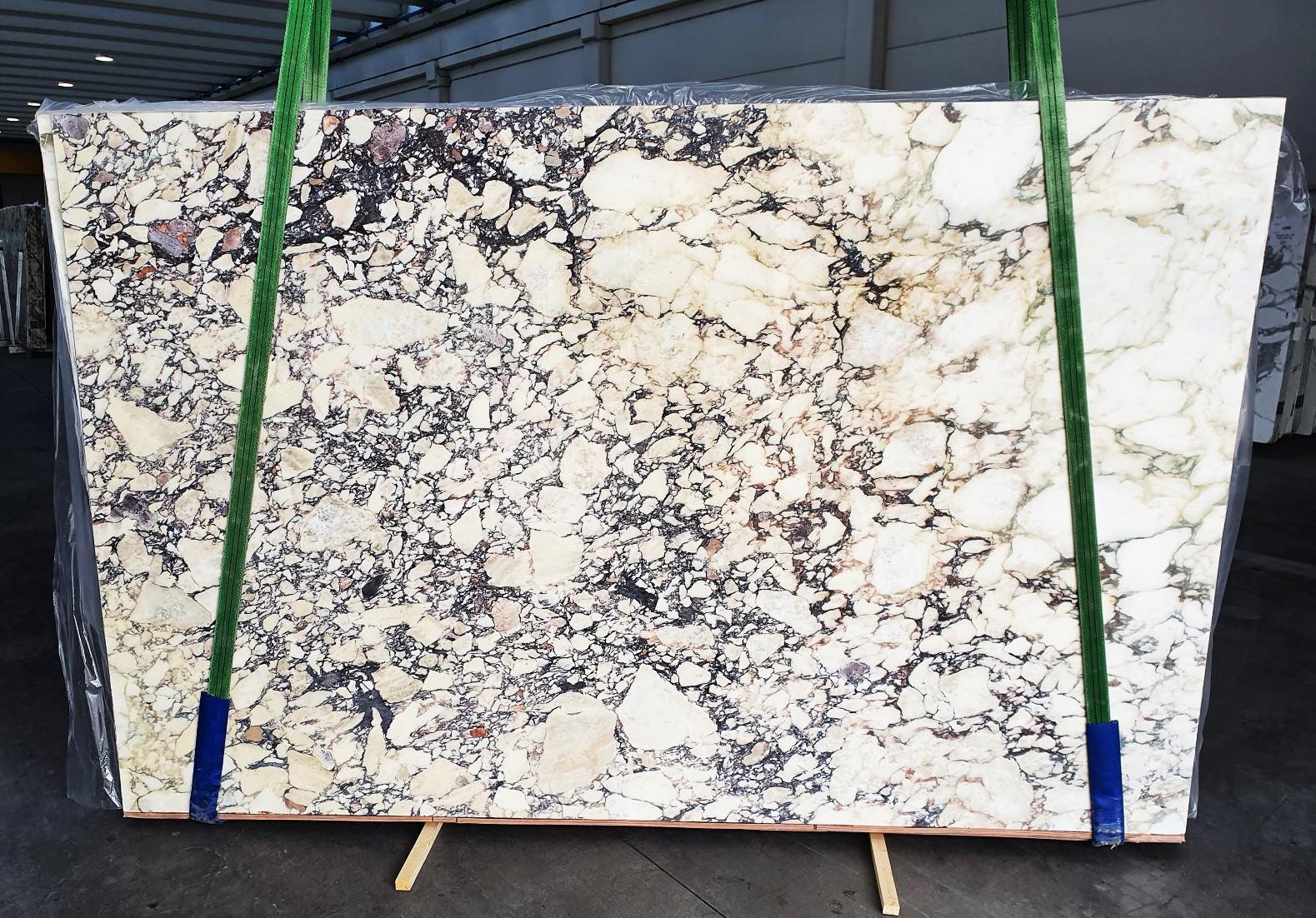 CALACATTA VIOLA Fornitura Veneto (Italia) di lastre grezze lucide in marmo naturale 1291 , Slab #26