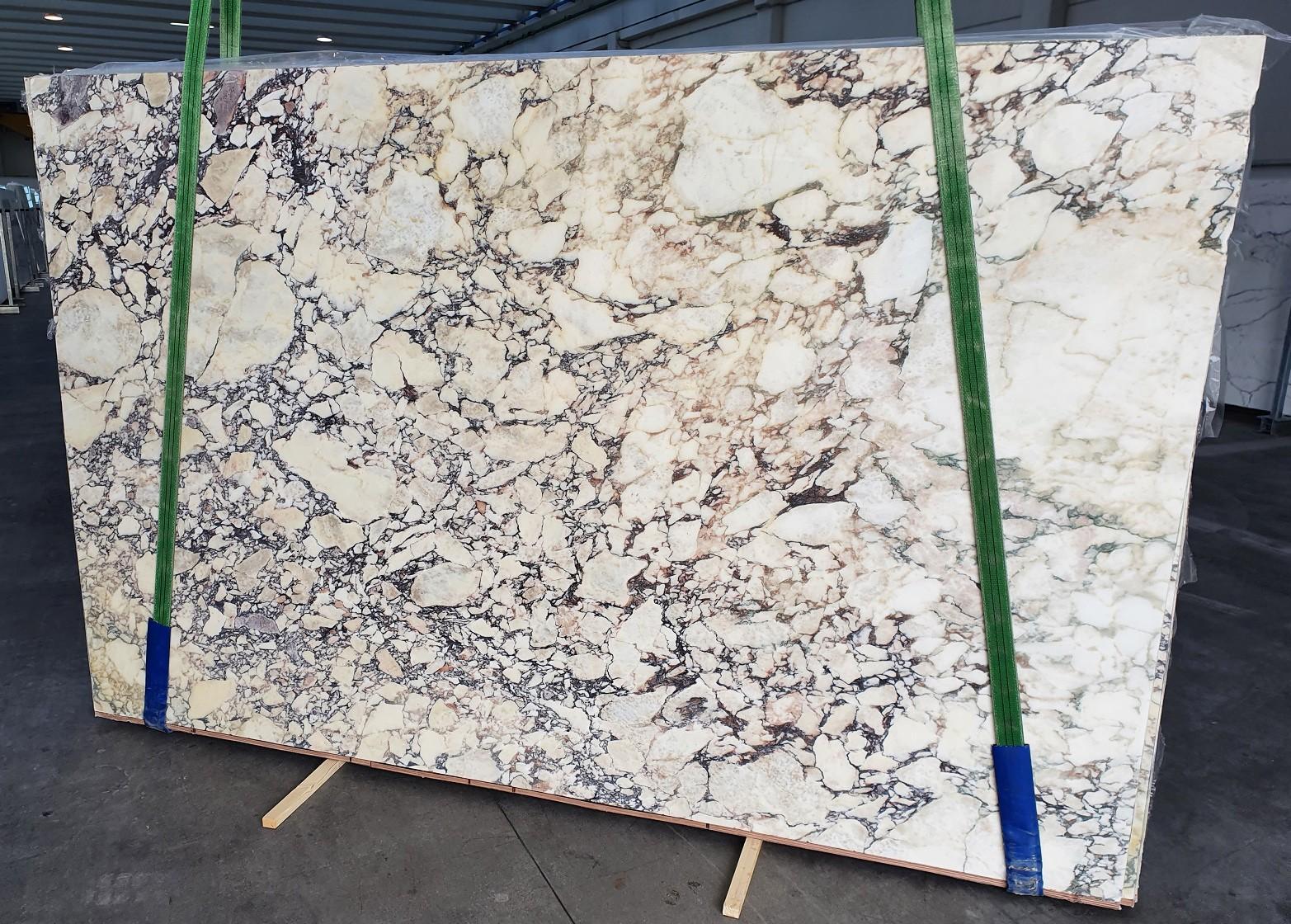 CALACATTA VIOLA Fornitura Veneto (Italia) di lastre grezze lucide in marmo naturale 1291 , Slab #18
