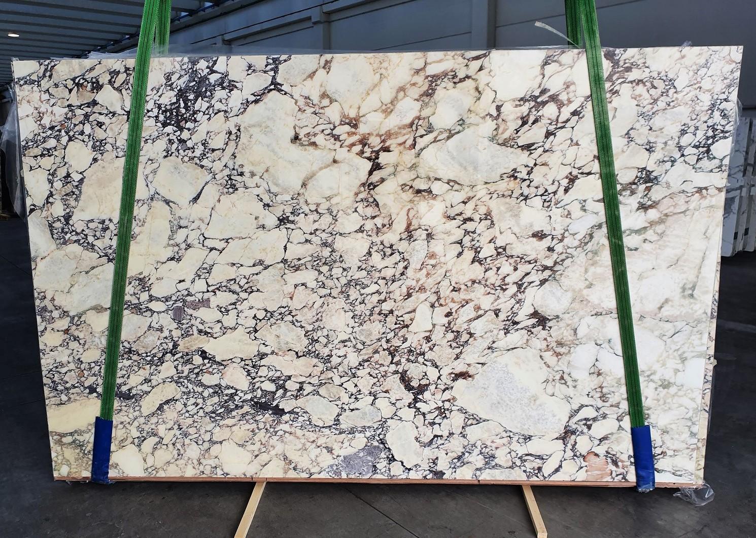 CALACATTA VIOLA Fornitura Veneto (Italia) di lastre grezze lucide in marmo naturale 1291 , Slab #10