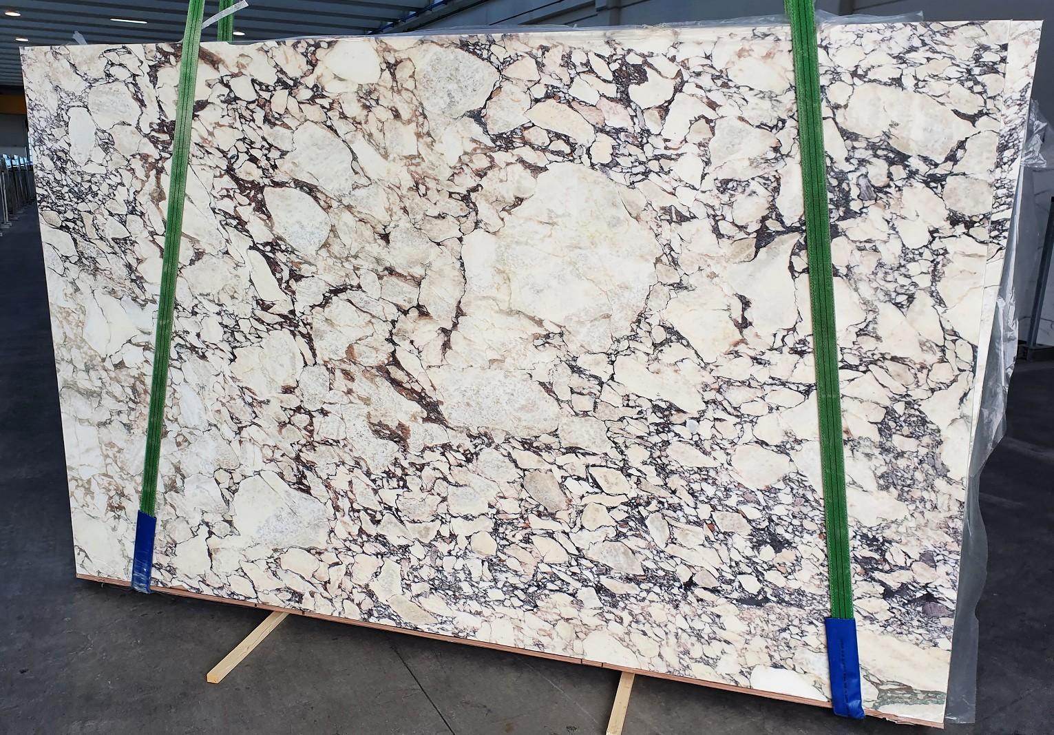 CALACATTA VIOLA Fornitura Veneto (Italia) di lastre grezze lucide in marmo naturale 1291 , Slab #01
