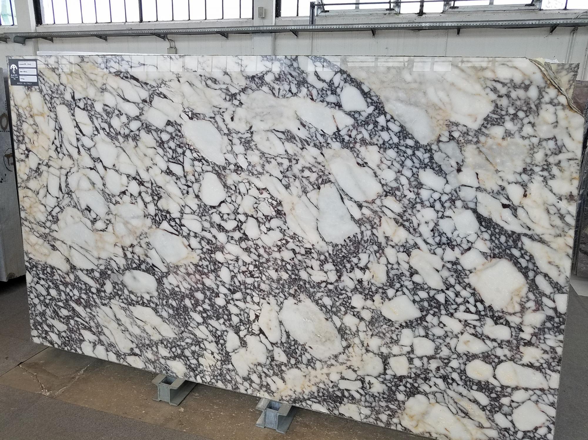 CALACATTA VIOLA Fornitura Veneto (Italia) di lastre grezze lucide in marmo naturale T0400 , SL2CM