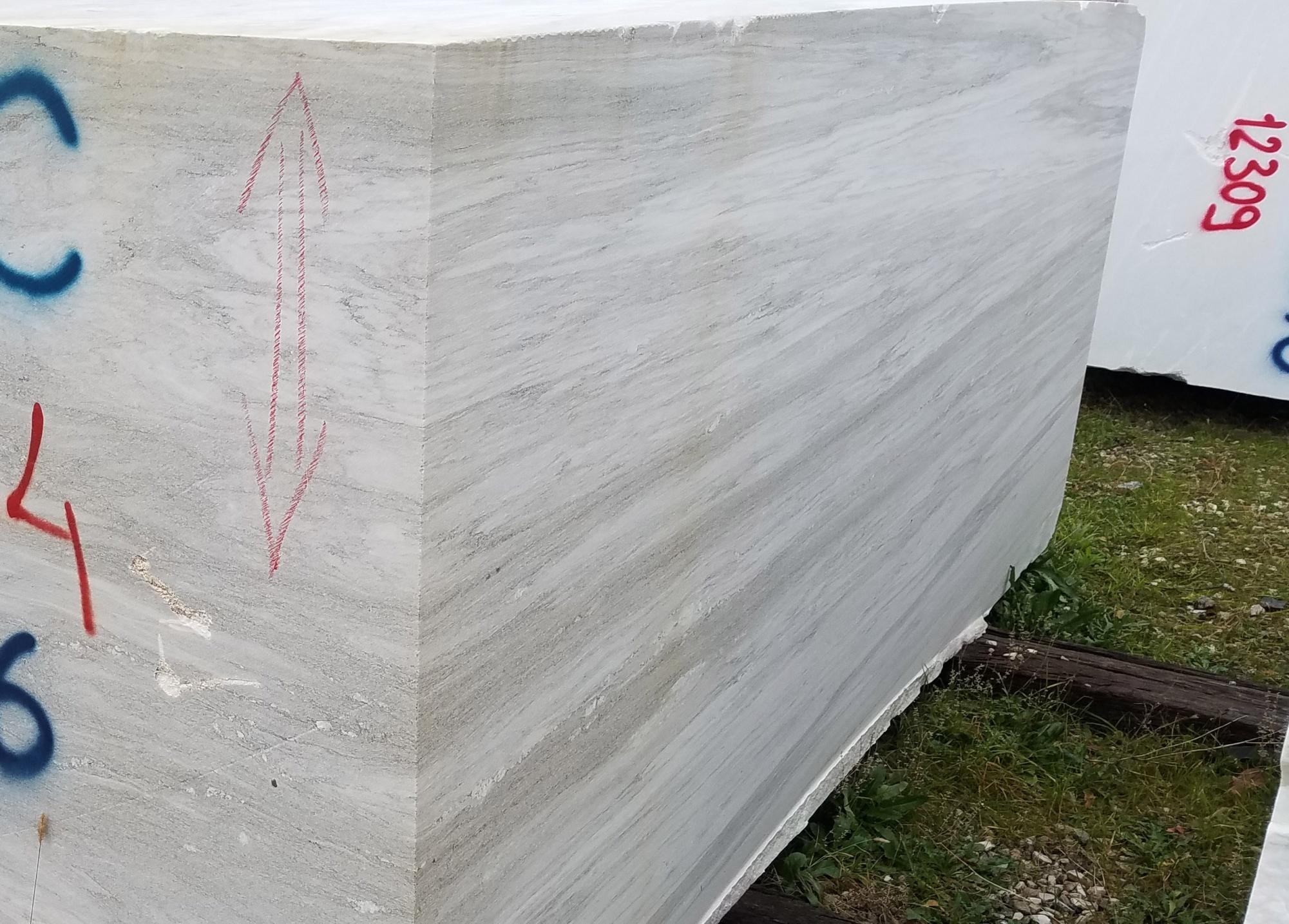 PALISSANDRO CLASSICO VENATO Fornitura Veneto (Italia) di blocchi segati a diamante in Dolomite naturale Z0166 , Face  B