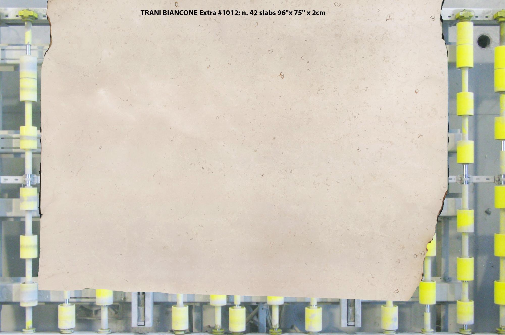 TRANI BIANCONE EXTRA Fornitura (Italia) di lastre grezze lucide in marmo naturale 1012 , Slab #01