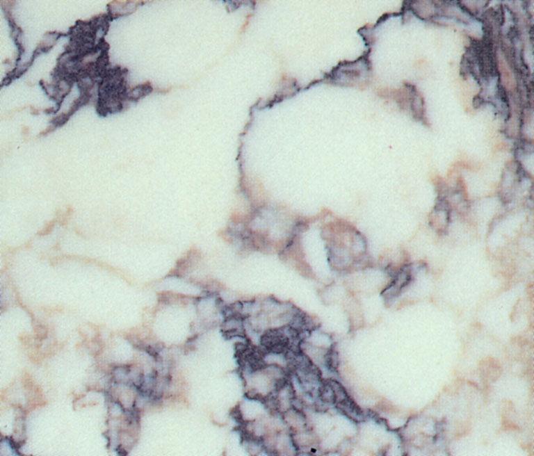 Scheda tecnica: CALACATTA VIOLA, marmo naturale lucido italiano