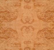 Scheda tecnica: Maple Cluster, acero impiallacciato lucido americano