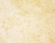 Scheda tecnica: VILHONNEUR BANC 8-9, arenaria naturale levigata francese