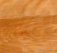 Scheda tecnica: Birch Curly, betulla massiccia lucida americana