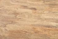 Scheda tecnica: Fibra di Ficodindia, ficodindia raschiato a mano italiano