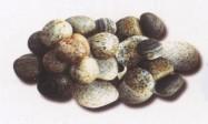 Scheda tecnica: MISTO GRIGIO, marmo naturale burrattato italiano