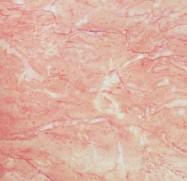 Scheda tecnica: CLASSIC SPRING ROSE, marmo naturale lucido iraniano