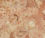 Scheda tecnica: PN MARBLE, marmo naturale lucido iraniano