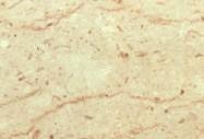 Scheda tecnica: PERLATO SICILIA  F, marmo naturale lucido italiano