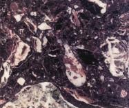 Scheda tecnica: ROSSO LEVANTO R1055, marmo agglomerato artificiale lucido italiano