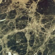 Scheda tecnica: MARRON IMPERIAL, marmo naturale lucido spagnolo