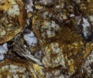 Scheda tecnica: PETRIFIED WOOD, pietra semipreziosa naturale lucida indonesiana