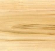 Scheda tecnica: POPLAR, pioppo massiccio lucido americano