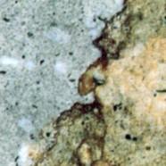 Scheda tecnica: TRACHITE ZOVONITE MISTA CALDA GRIGIA, trachite naturale levigata italiana