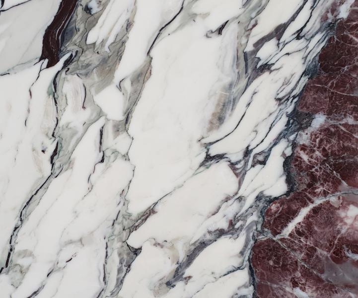 BRECCIA CAPRAIA pietra lucida